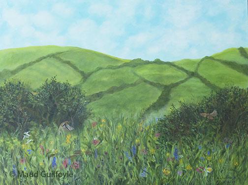 Meadow III, Coronation Meadow Project